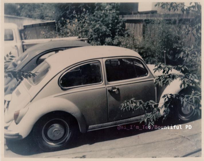 Ted Bundy Volkswagen VW 1975
